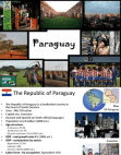 Consumer behaviour pattern Paraguay