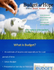 Indian Union Budget 2013-14 Presentation