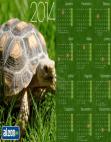 Calendário 2014 Jabuti