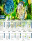 Calendário 2014 Discos