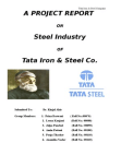 project report on TATA STEEL